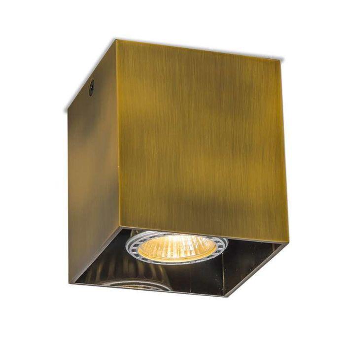 Spot-Qubo-1-bronze