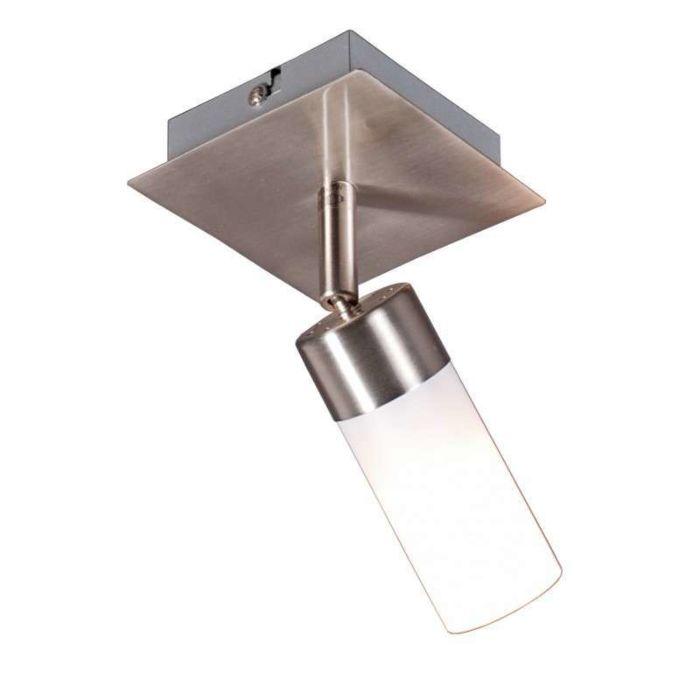 Spotlight-Capo-1-steel