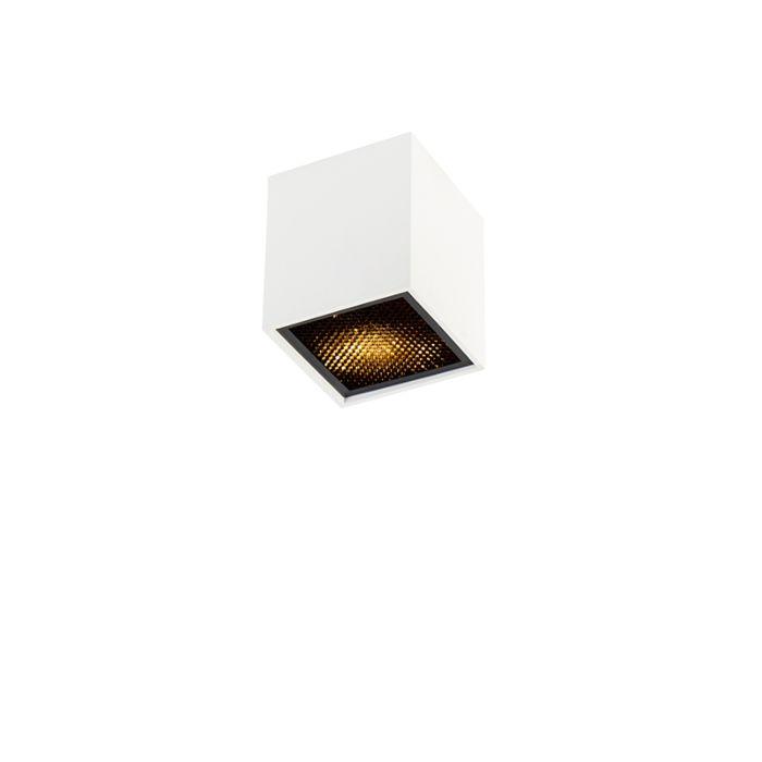 Design-spot-white---Qubo-Honey