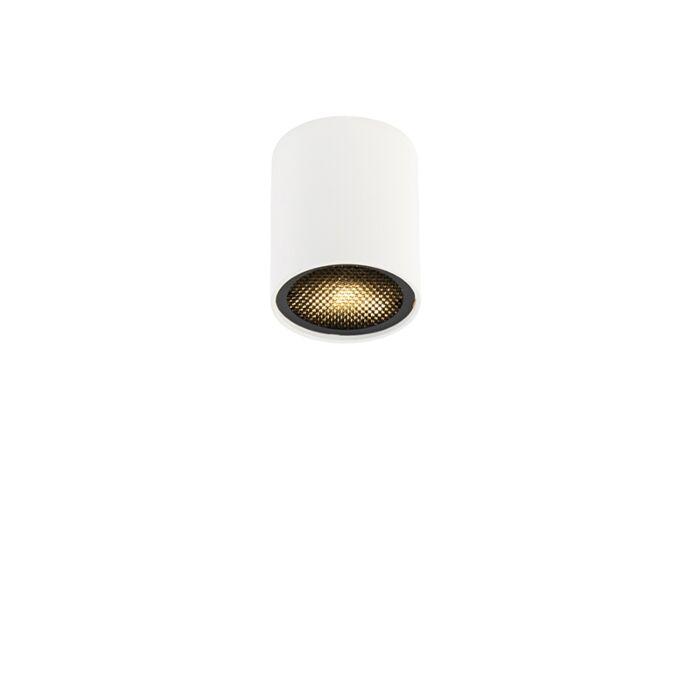 Design-spot-white---Tubo-Honey