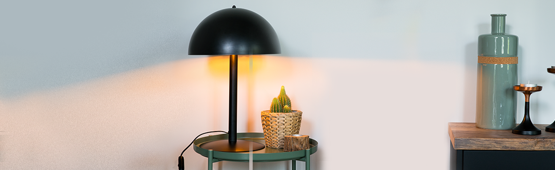 Non-replaceable LED Light