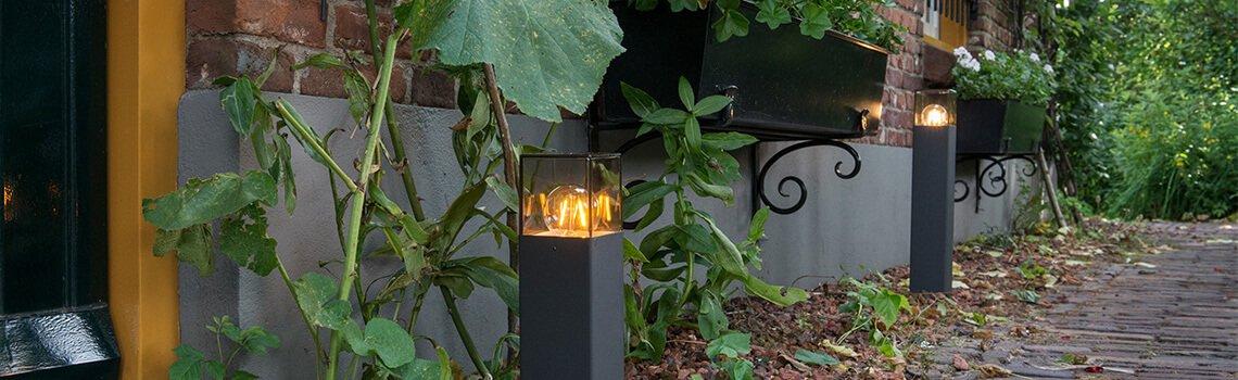 tips & tricks -  garden lighting - banner